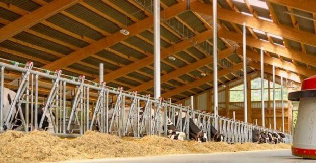 Ūkininkų kreditavimas auga